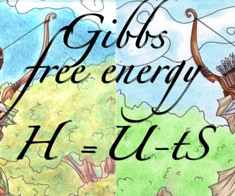 Energy, Entropy and Gibbs free Energy